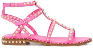 Ash Precious 03 studded sandals