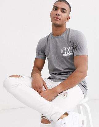 Calvin Klein Jeans graphic t-shirt-Grey