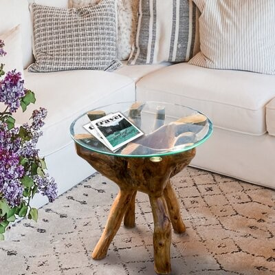 Thumbnail for your product : World Menagerie Vinit End Table
