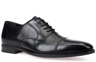 Geox Newlife Leather Oxford Dress Shoe