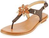 MICHAEL Michael Kors Heidi Floral Flat Thong Sandal, Brown/Acorn