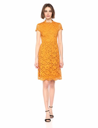 Lark & Ro Amazon Brand Womens Cap Sleeve Lace Dress with Scallop Details