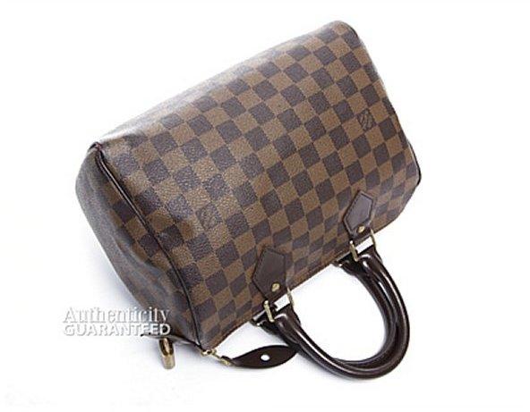 Louis Vuitton Damier Ebene Speedy 25 Bag