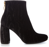 Stella McCartney Ribbon curved-heel velvet-devoré ankle boots