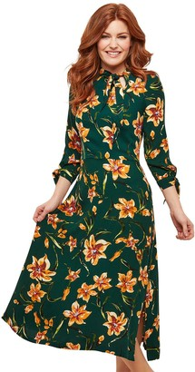 Joe Browns Charismatic Dress - Green Multi