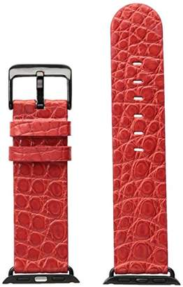 Hadley Roma AP1000UQ 38A 38mm Apple Strap Alligator MTE Leather Alligator Watch Strap