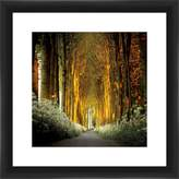 PTM Images 1-29113 Path in The Woods, 35.56x35.56 Wall Art