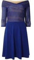 Dorothy Perkins Womens **Tall Cobalt Lace Bardot Dress- Cobalt
