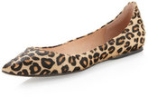 Steve Madden Steven By Eternal Pointed-toe Flat, Leopard Print