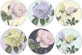 Ted Baker Rosie Lee Round Coasters - Set of 6