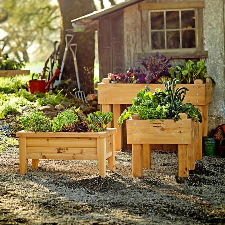 Williams-Sonoma Farmer D Cedar Bed-on-Legs Kit, 2' x 2'
