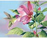 "Dimensions Paint By Number Kit - Hibiscus Hummingbird (11x14"")"