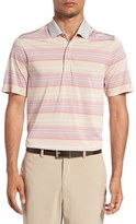 Cutter & Buck Men's 'Reprieve' Stripe Polo Shirt