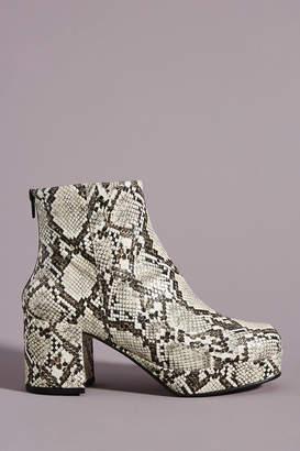 Faryl Robin Modelo Platform Ankle Boots