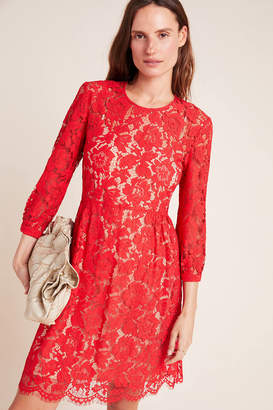 Mare Mare Persephone Lace Mini Dress