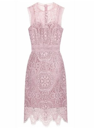 Dorothy Perkins Womens Chi Chi London Pink Crochet Bodycon Dress, Pink