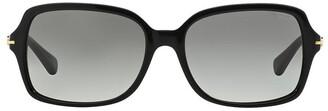Coach HC8116F 368591 Sunglasses