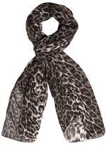 Evans Multi Coloured Leopard Print Scarf