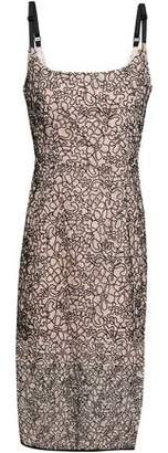 Milly Corded Lace Dress