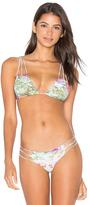 San Lorenzo Braided Strap Bikini Top