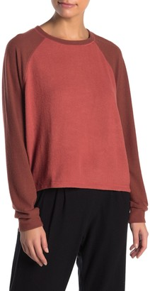 Project Social T Colorblock Raglan Sleeve Brushed Knit Pullover