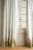 Anthropologie Tulip & Eucalyptus Curtain