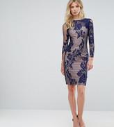 Little Mistress Tall All Over Mesh Lace Pencil Dress
