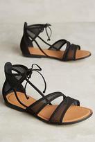 Klub Nico Jemina Sandals