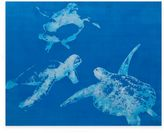 Bassett Mirror Company Sea Turtles Canvas Wall Art