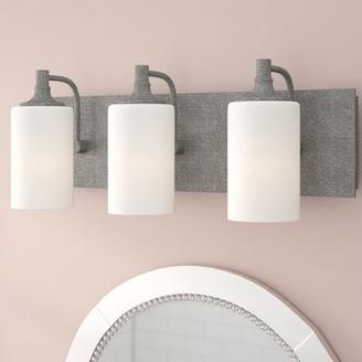 Willa Arlo Interiors Dian 3-Light Vanity Light Willa Arlo Interiors Finish: Zinc