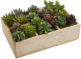 Nearly Natural 12-In. Mixed Succulent Garden in Tray Artificial Plant