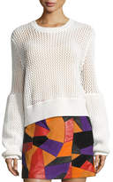 McQ by Alexander McQueen Mesh Knit Crewneck Sweater, Ivory