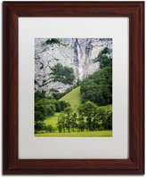 Trademark Fine Art Power Source Artwork by Philippe Sainte-Laudy Wood Frame