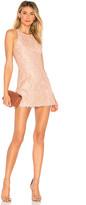 NBD Brianna Dress