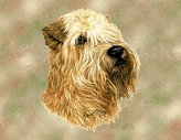 Dickens & Smyth Wheaton Terrier Lp Sq 1189-LS by pure country