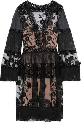 Alberta Ferretti Fringe-trimmed Embroidered Tulle, Cotton-mesh And Chiffon Dress