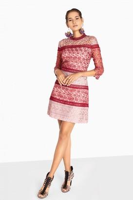 Little Mistress Megan Mixed Crochet Panel Shift Dress