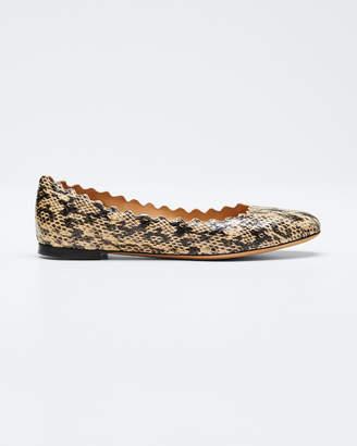 Chloé Lauren Snake-Print Scallop Ballet Flat