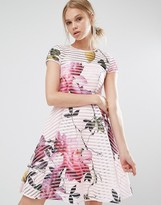 Ted Baker Citrus Bloom Full Mesh Dress
