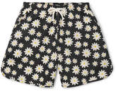 Holiday Boileau Printed Mid-Length Swim Shorts