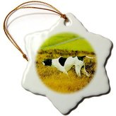 3dRose LLC orn_513_1 Dogs The Pointer - The Pointer Dog - Ornaments