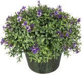 Winward Silks Wild Violet Desk Top Flowering Plant in Planter