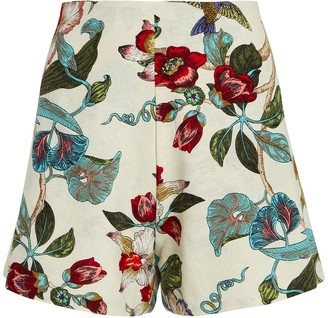 Just Bee Queen Catalina Floral Cotton Shorts