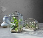 Pottery Barn Glass Terrarium