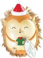 Carlton 2015 Grandson Ornament