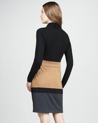 Phoebe Couture Colorblock Turtleneck Dress