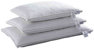 Natural Comfort Quilted Feather Billow Pillows, Standard