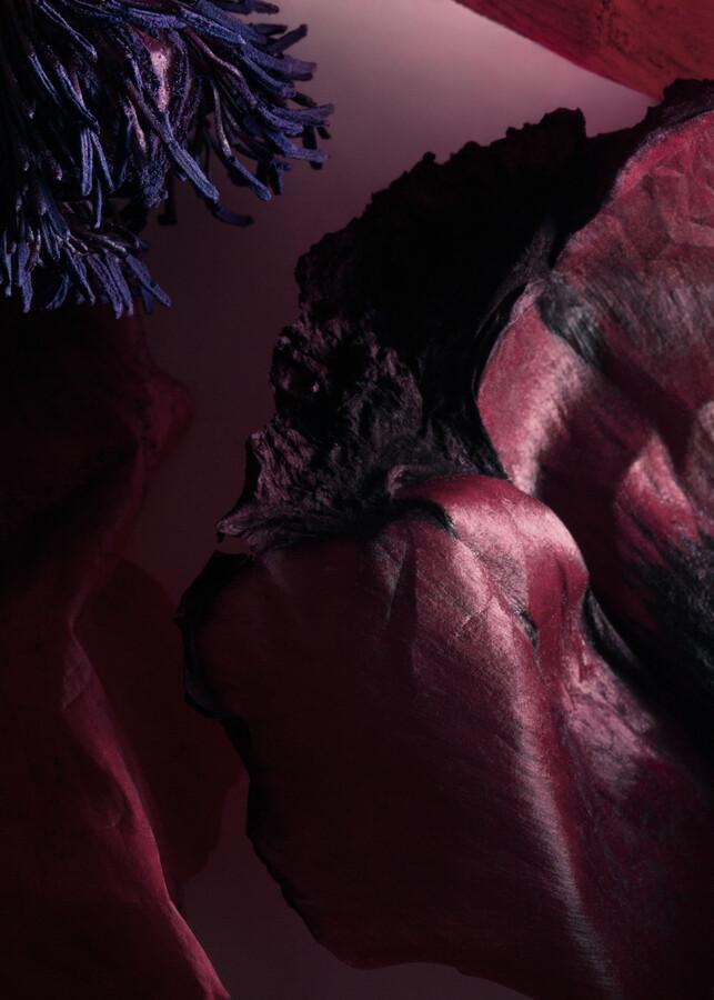 Thumbnail for your product : And other stories Sardonyx Fire Eau de Toilette