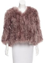 Trina Turk Feather Collarless Jacket