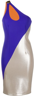 Fausto Puglisi One Shoulder Panelled Dress